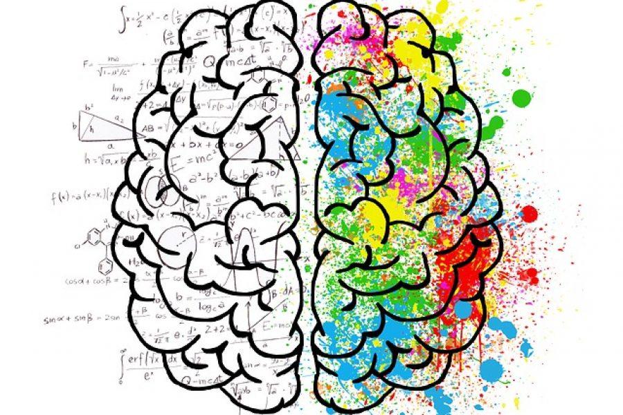 Saiba como utilizar o Neuromarketing a seu favor