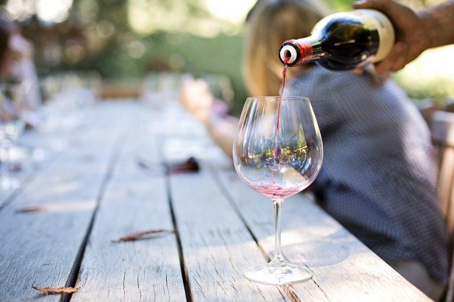 Os 9 melhores vinhos do nosso passeio